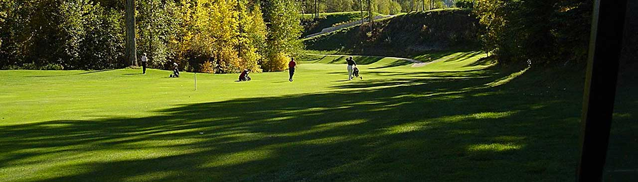 Golfers putting on the green